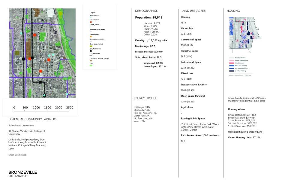 Bronzeville Site Analysis